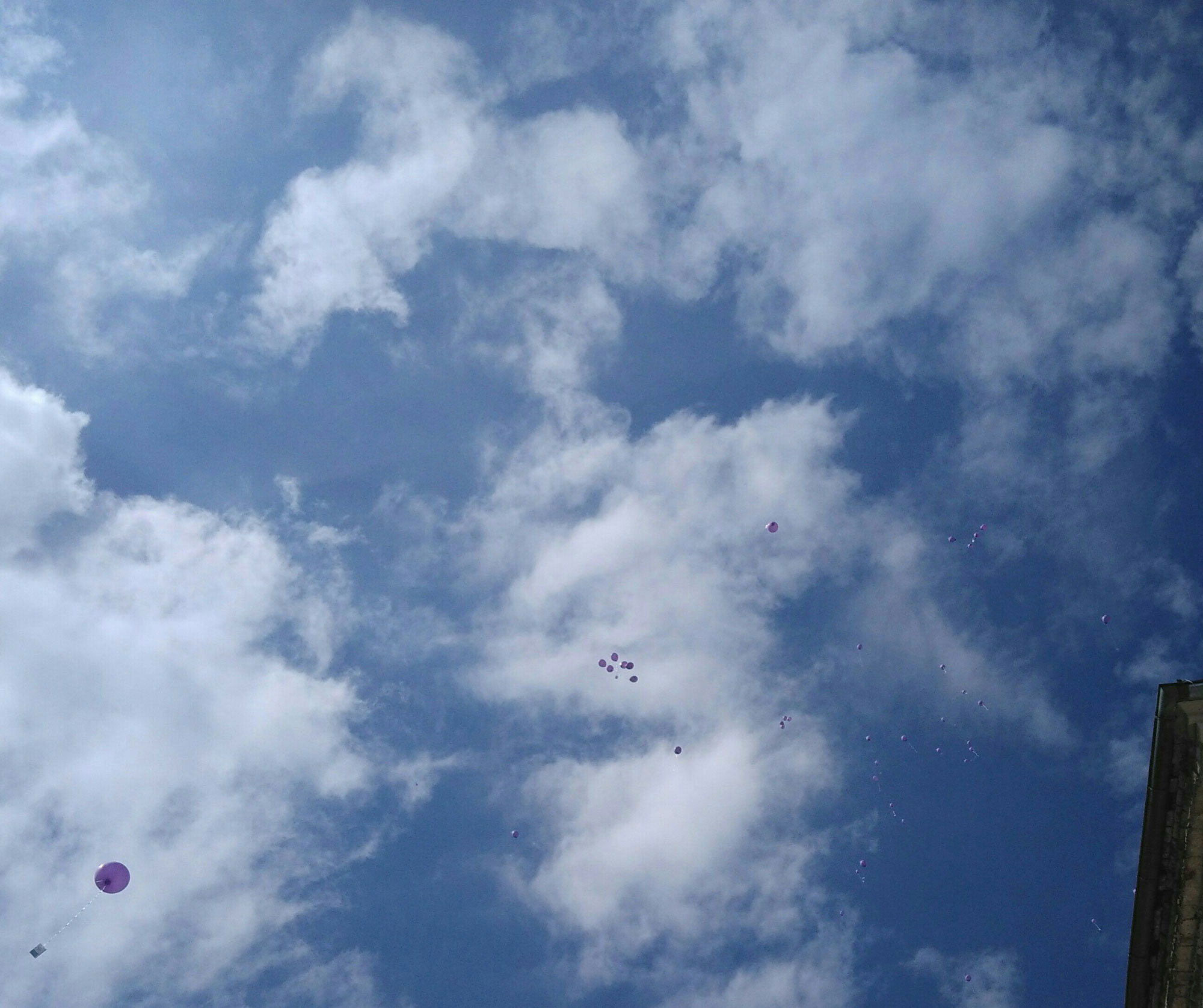Luftballons steigen