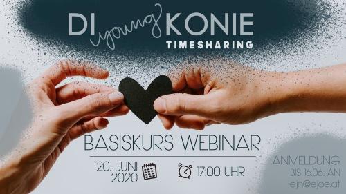 Poster zum Webinar Timesharing der Diakonie